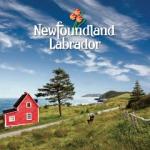 Ad_Newfoundland_240x240
